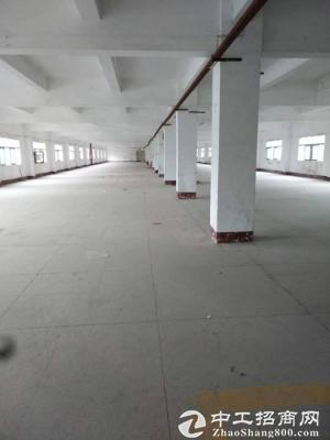 原房东 横岗 六约 一楼500平 精装修 可分租-图2