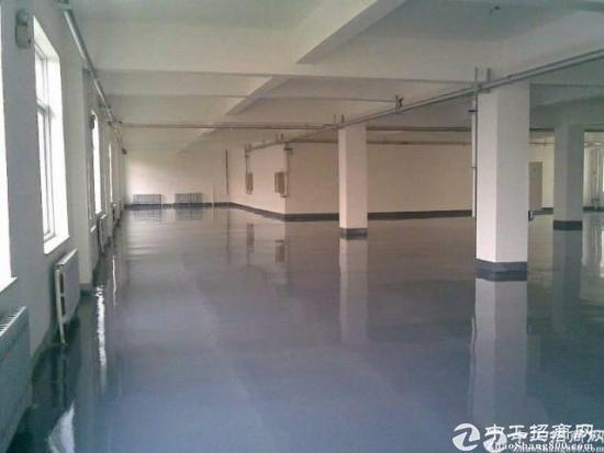 塘厦靠近深圳石马新出精装修500厂房