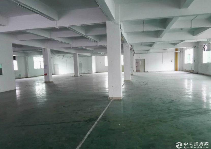 石排沙角标准独院厂房分租一楼1000平方 现成装修-图3