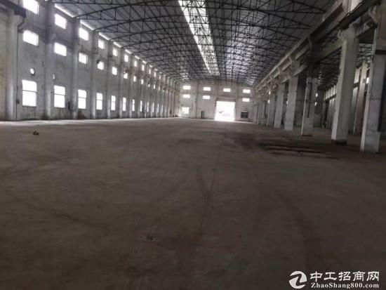 东莞超高单一层独院厂房5500平方招租,滴水12米