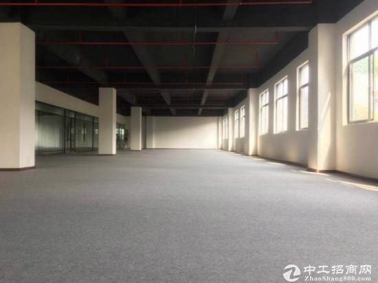 爱南路离深汕路交接处3000平米办公室出租-图2