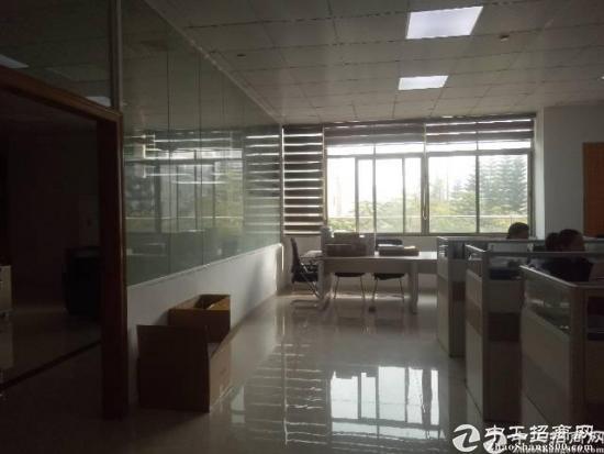 爱南路离深汕路交接处3000平米办公室出租