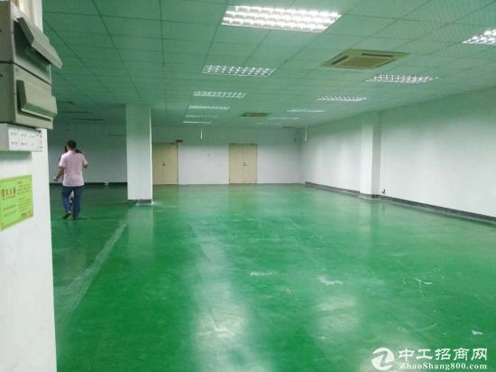 坪山大工业区原房东豪华装修二楼2000平出租