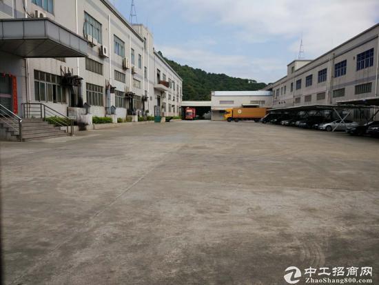 龙华汽车站旁边花园式厂房整层1400平可分租