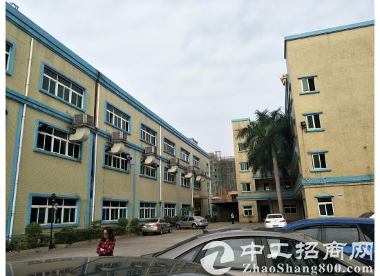 茶山镇标准厂房3层4800平方米,低价出租