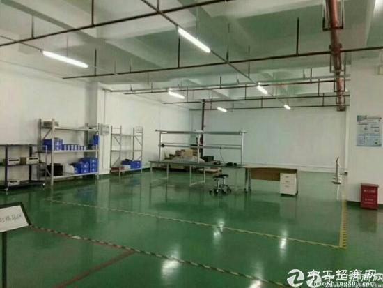 深圳龙岗平湖华南城附近新出楼上1200