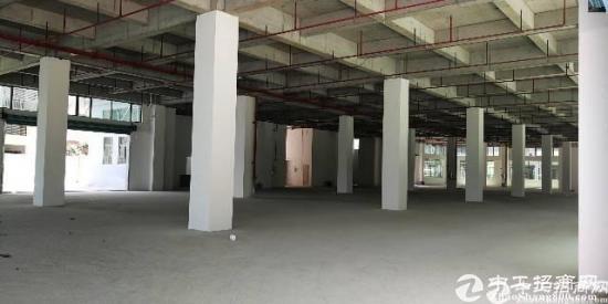 沙田新出花园式标准厂房 楼房三层4800平 单一层2200平