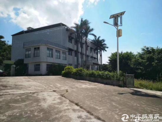 惠东县稔山镇独院厂房出租19000平方米