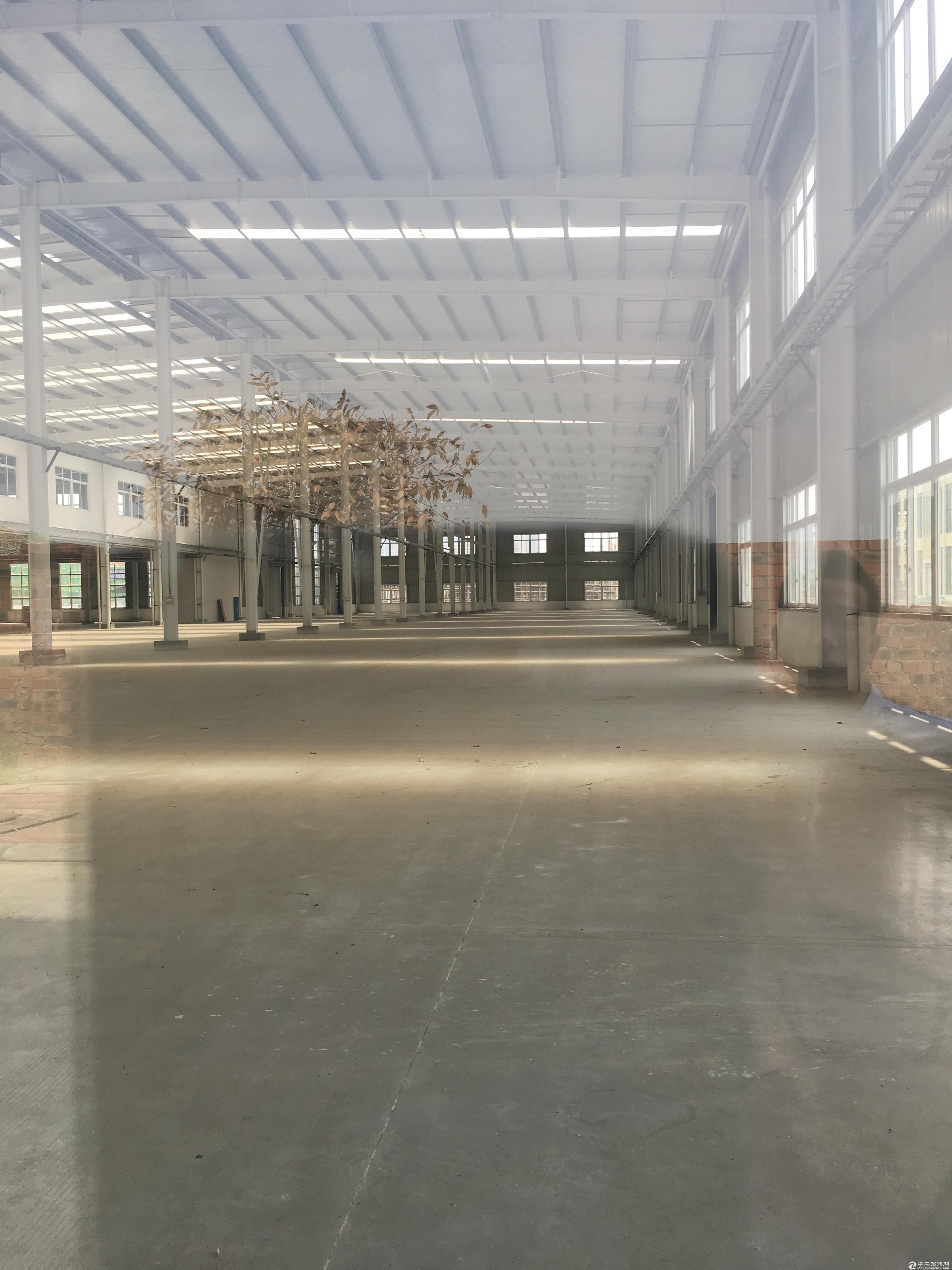 钢结构5000平车间招租,资源稀缺