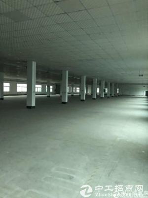 坪山石井新出标准厂房一楼3000平可分租