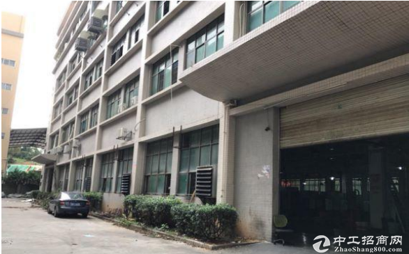 上口村标准厂房一楼700平招租