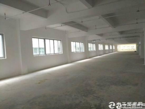 横岗永湖地铁口电商创意园230平380平1000平