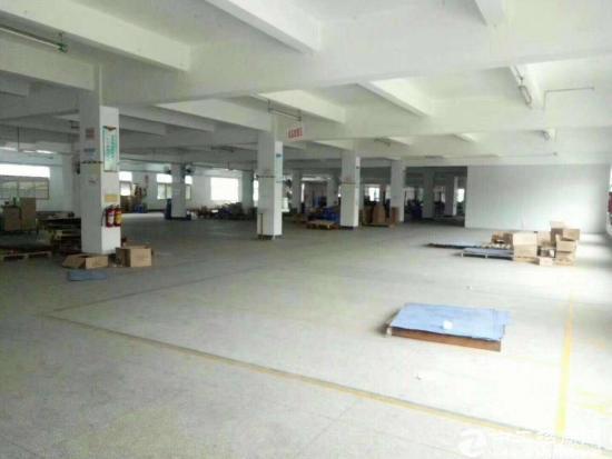 坪山石井新出一二楼厂房共6000平米带装修招租