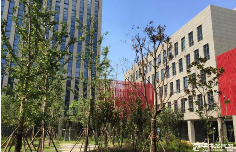 漕河泾高端研发厂房、可生物医药、研发办公类、仓储电