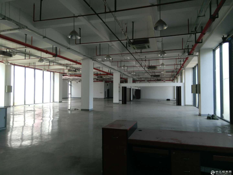 浦江漕河泾 整层1800平出租 104地块可分租