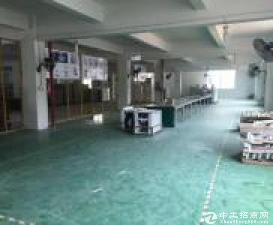 平湖华南城周边富民工业区一楼原房东厂房1560招租