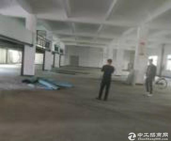 [平湖厂房]平湖镇政府高新技术企业独院厂房10000平方米出.