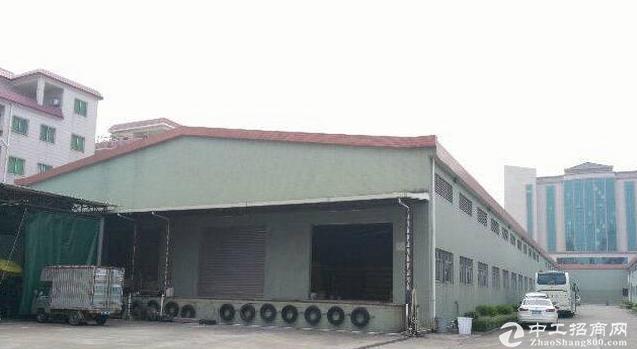 石排镇单一层1800平方钢构厂房招租