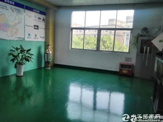 龙华大浪华荣路边新出楼上1350平米厂房出租-图4
