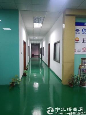 龙华大浪华荣路边新出楼上1350平米厂房出租-图3