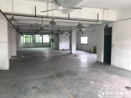 厚街镇厚街村鳌台东路厂房1楼360方及3-5楼每层350方招租