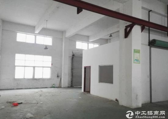 碧岭新出独院厂房5012平带,红本大,小可分