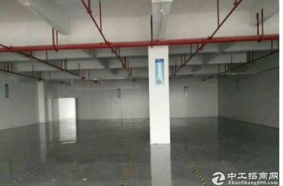(出租) 龙岗坪山深汕路 独院3500平 有红本厂房可分租