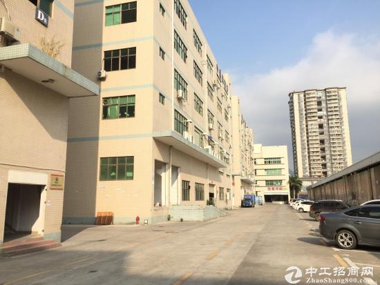 坪山 石井 大型工业区一楼1300平方招租