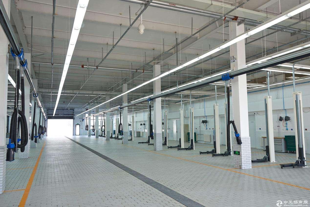 浦江镇2800平汽车展厅 层高11米 交通便利