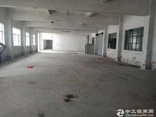 厚街村石角路工业园宿舍一楼500方,厂房1000方,月底空