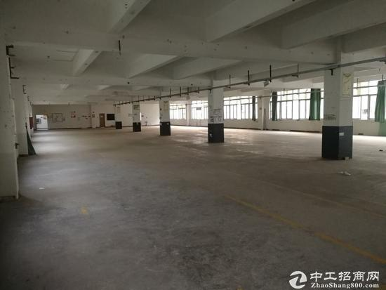红本出售龙岗坪山独门独院8000平厂房