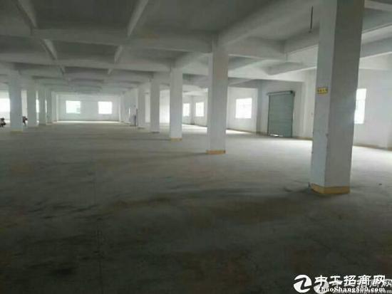 超大独院原房东带红本出租A栋厂房一楼2200平