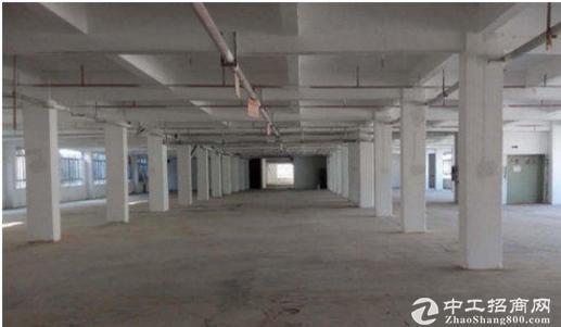 高埗上江城标准一楼1450平方,高5米