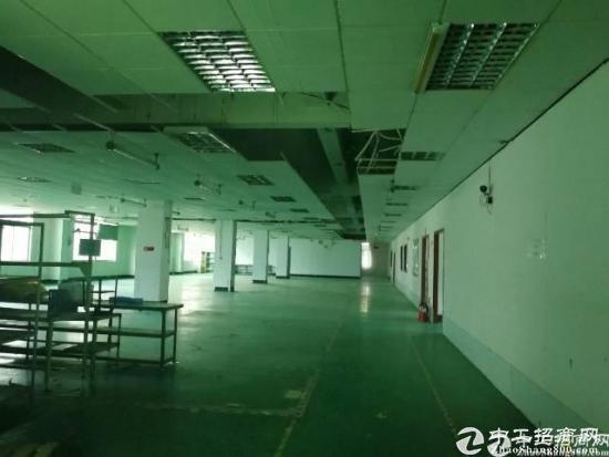 龙华 汽车站后面新出原房东优质厂房3楼整层1600平