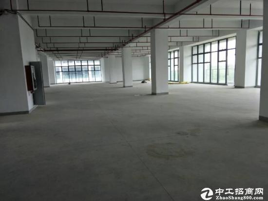 南城商业街附近独栋楼盘楼上有全新装修1200平