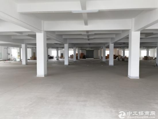 【出售】红本 龙岗坪山独门独院 8000平厂房