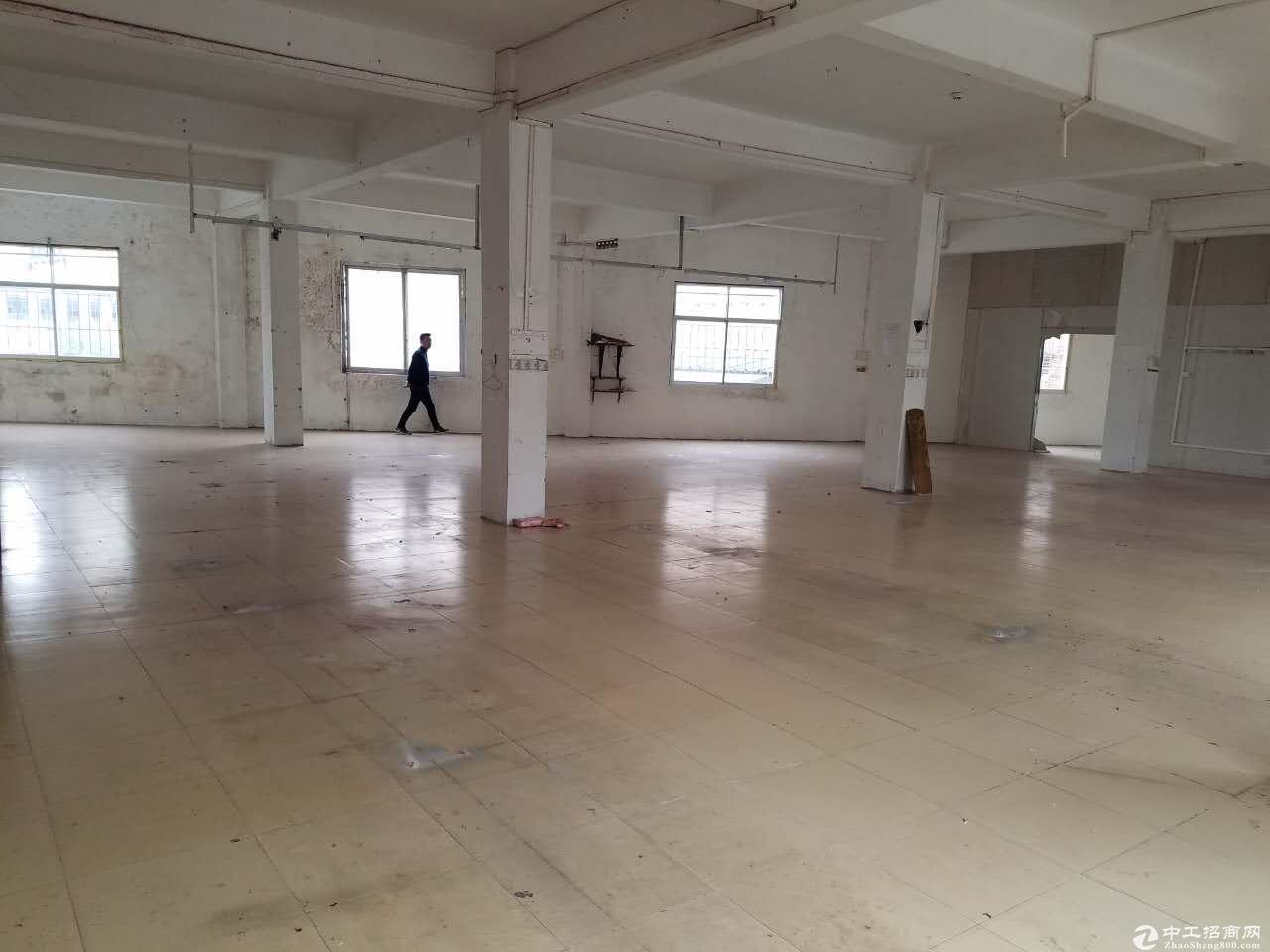 南海区桂城平西深涌工业区(厂房出租)-图5