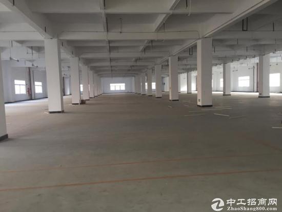 长安镇沿江高速出口新出楼上2459平米带装修厂房