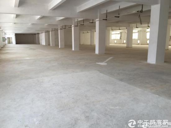 新出厂房四楼带5吨超大货梯出租,大小可分租