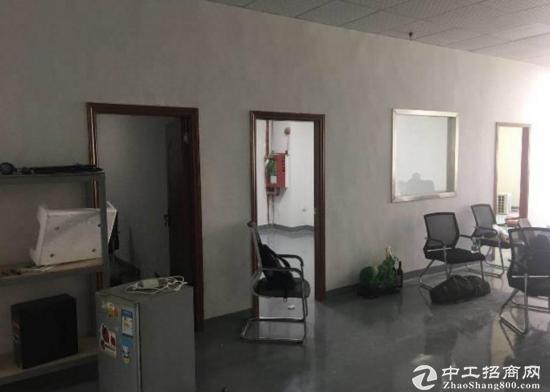 精装修办公厂房450平出租 坪山 高新区