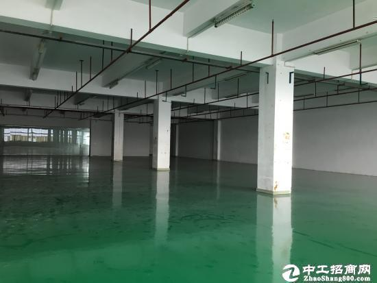 中山小榄独院超漂亮厂房22000平方出租可分租
