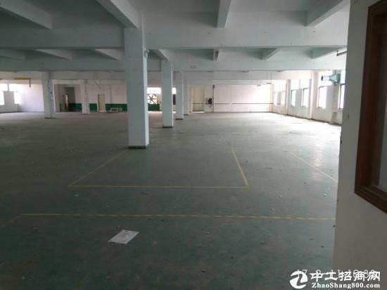 坪山六联新出一楼500平带办公室出租