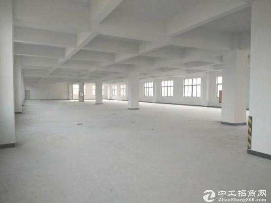 沙田镇新出形象高大上标准楼房5层共6000平方,每层1200
