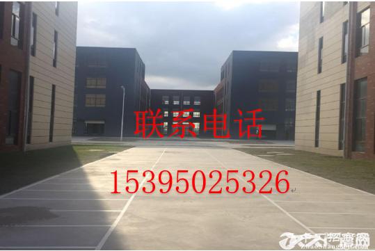 出售 标准化厂房首层层高8.1米