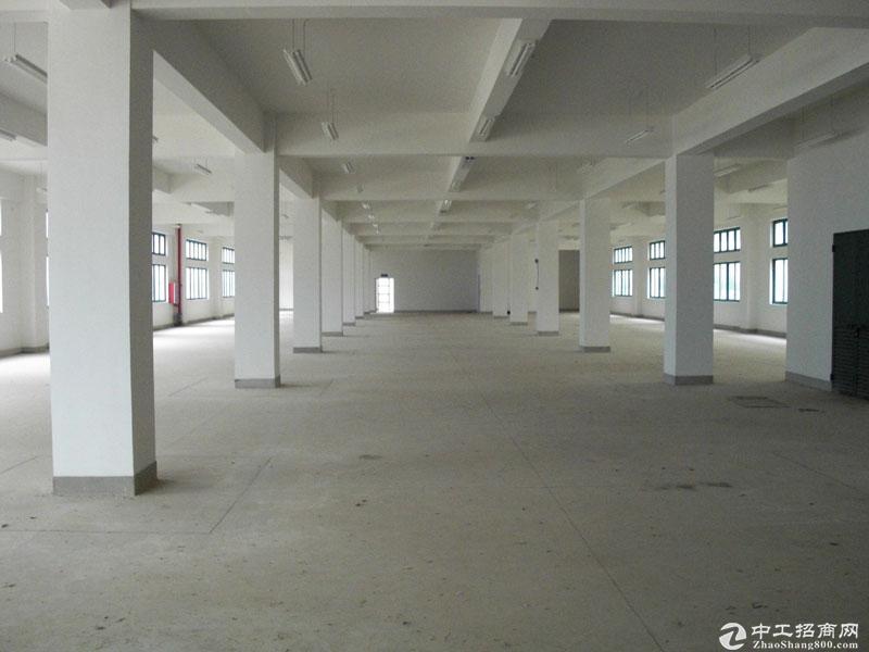 2吨货梯 整层独立产权办公研发厂房出售 104板块
