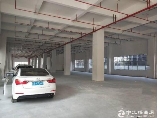 坂田杨美地铁站附近新出26000平米厂房出租-图7