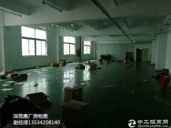 坂田杨美地铁站附近新出26000平米厂房出租-图2