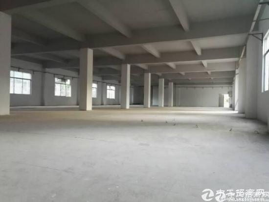坪山新出原房东独院厂房6000平一楼5.5高