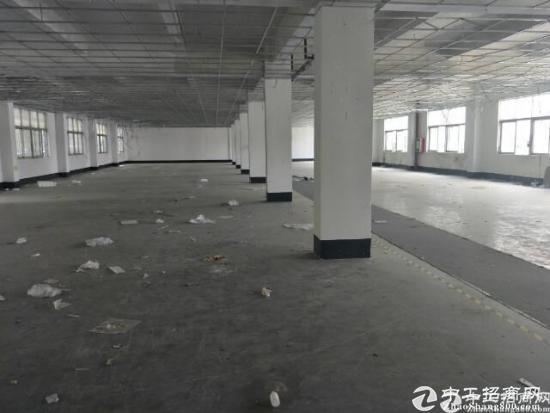 坪山石井社区主干道旁新出楼上标准1300平带简装