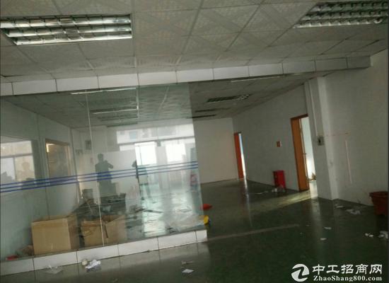 坑梓老坑新出原房东楼上带装修办公室600平方